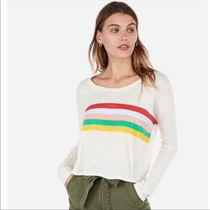 Express Boxy Graphic Rainbow Stripe Crop Top